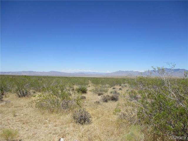 5 acres Florence & Water Tank, Dolan Springs, AZ 86441 (MLS #973720) :: The Lander Team