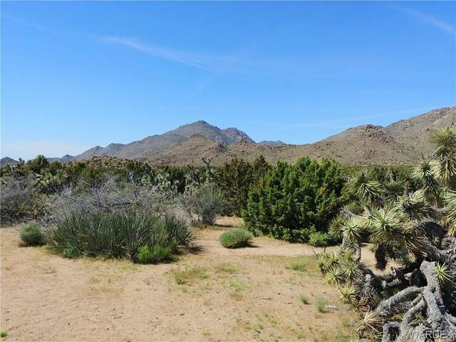 3288 A E Sun Valley Road, Yucca, AZ 86438 (MLS #973753) :: The Lander Team