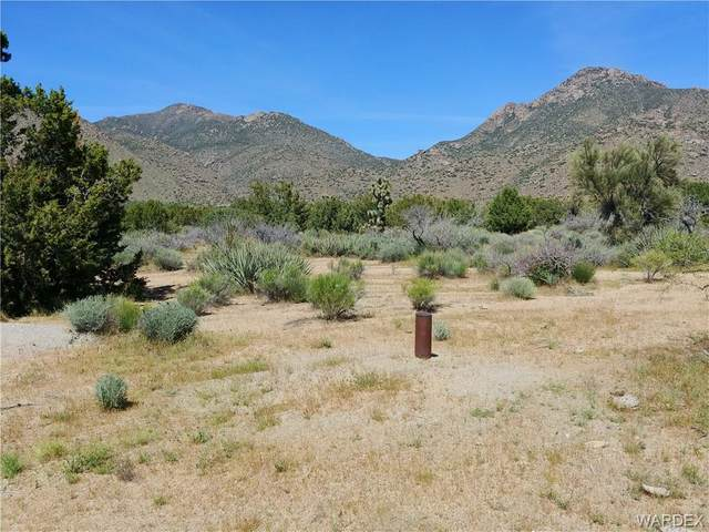 3288 B E Sun Valley Road, Yucca, AZ 86438 (MLS #973755) :: The Lander Team