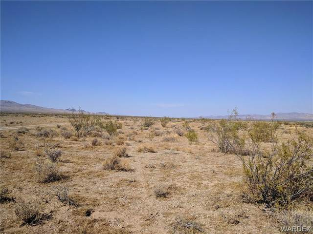 0000 N Coyote Road, Dolan Springs, AZ 86441 (MLS #974093) :: The Lander Team