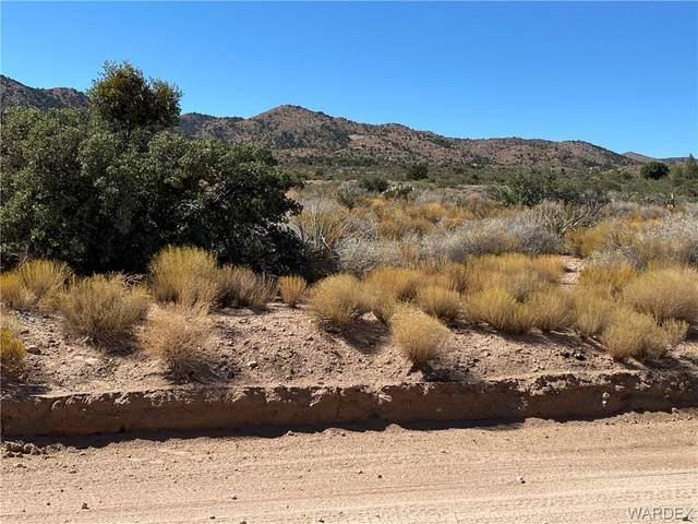 tbd Frerich Ranch Rd, Hackberry, AZ 86411 (MLS #974264) :: The Lander Team