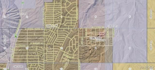 TBD Terry Lane, Meadview, AZ 86444 (MLS #974304) :: The Lander Team