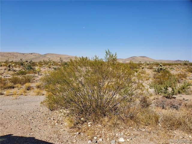 8923 + 2 W Waupaca Drive, White Hills, AZ 86445 (MLS #974417) :: The Lander Team