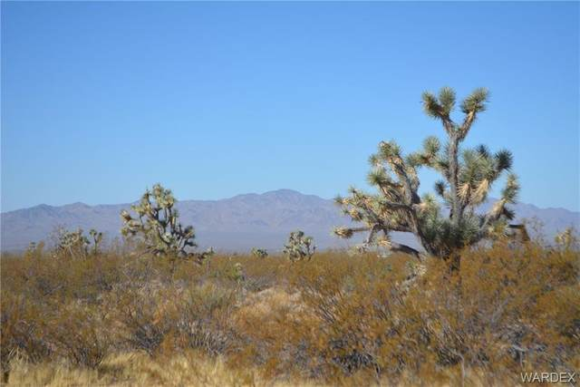 158B Pygmy Owl Road, Yucca, AZ 86438 (MLS #974666) :: The Lander Team
