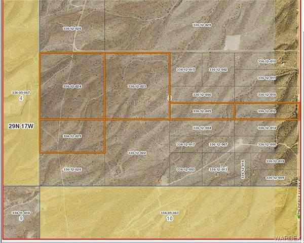TBD N Pierce Ferry Road, Meadview, AZ 86444 (MLS #974699) :: The Lander Team