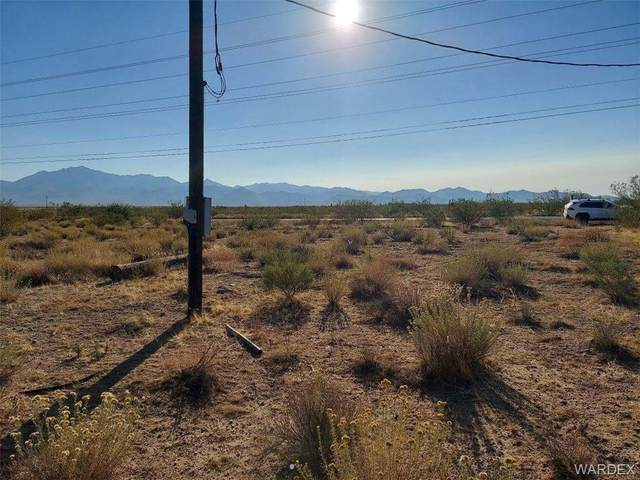 14451 N Pierce Ferry Road, Dolan Springs, AZ 86441 (MLS #974718) :: The Lander Team