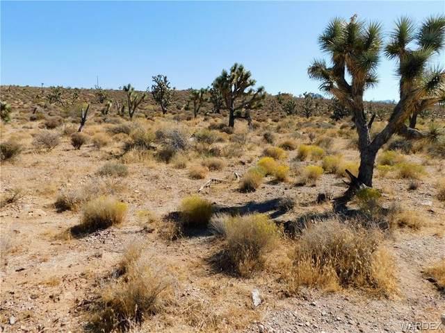 27086 N Tamarisk Street, Meadview, AZ 86444 (MLS #974945) :: The Lander Team