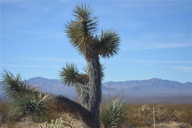 Parcel 744 Wild Bill Road, Yucca, AZ 86438 (MLS #975291) :: The Lander Team