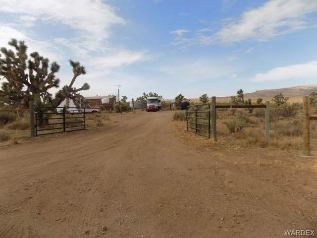 18837 N Queen Drive, Dolan Springs, AZ 86441 (MLS #976849) :: The Lander Team