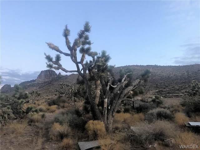 5860 W 14th Street, Dolan Springs, AZ 86441 (MLS #976867) :: The Lander Team
