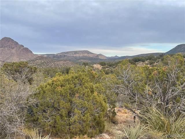 160 Acres 254-26-001, Kingman, AZ 86401 (MLS #976897) :: AZ Properties Team | RE/MAX Preferred Professionals