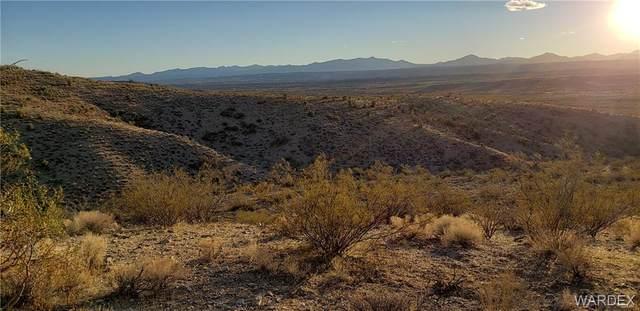 0000 Mountain Goat Road, Kingman, AZ 86401 (MLS #977502) :: The Lander Team