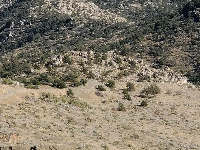 41.29 acres Rene Road, Kingman, AZ 86409 (MLS #977573) :: AZ Properties Team | RE/MAX Preferred Professionals