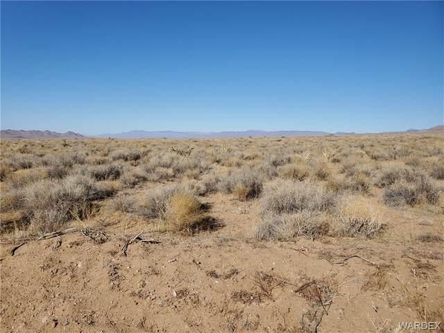 12.18 acres E Timothy Drive, Kingman, AZ 86409 (MLS #977650) :: AZ Properties Team | RE/MAX Preferred Professionals
