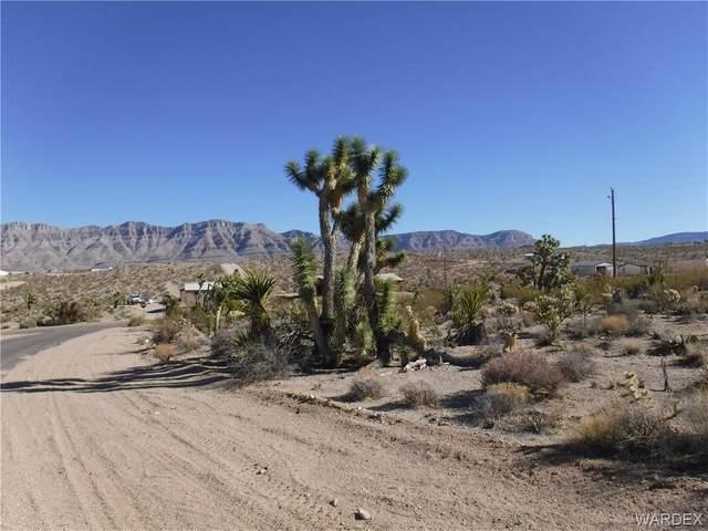 480 E Bradley Bay Drive, Meadview, AZ 86444 (MLS #977773) :: AZ Properties Team   RE/MAX Preferred Professionals