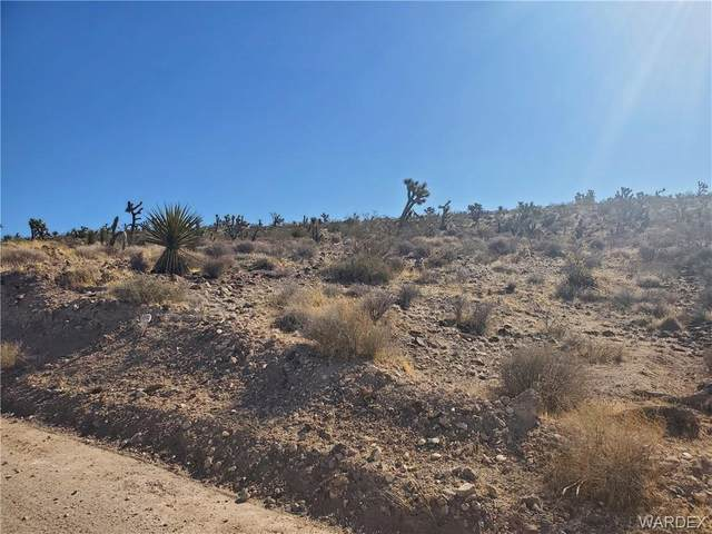 Unknown N Hardy Road, Meadview, AZ 86444 (MLS #977948) :: The Lander Team