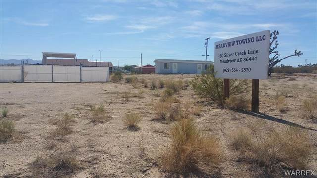 80 W Silver Creek Drive, Meadview, AZ 86444 (MLS #977964) :: AZ Properties Team | RE/MAX Preferred Professionals