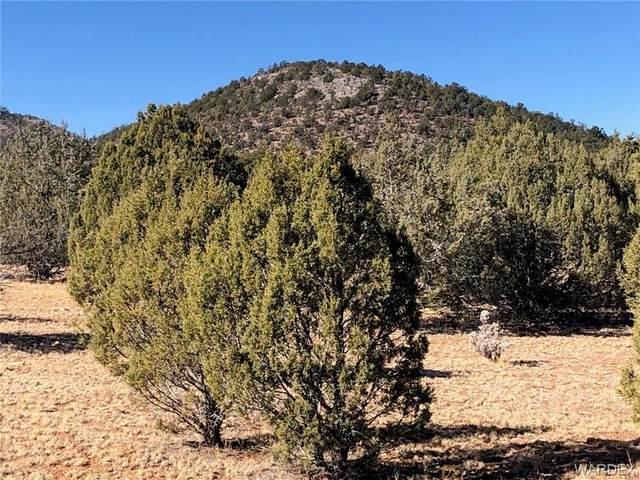 320 acres Cross Mtn Trout Creek, Seligman, AZ 86337 (MLS #977976) :: AZ Properties Team | RE/MAX Preferred Professionals