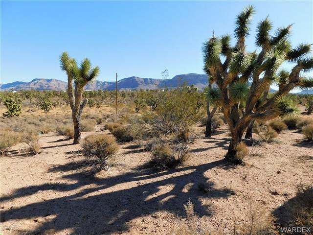 26865 N Rose Road, Meadview, AZ 86444 (MLS #978007) :: AZ Properties Team | RE/MAX Preferred Professionals