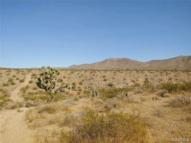 TBD Near Gold Basin, Meadview, AZ 86444 (MLS #978039) :: AZ Properties Team | RE/MAX Preferred Professionals