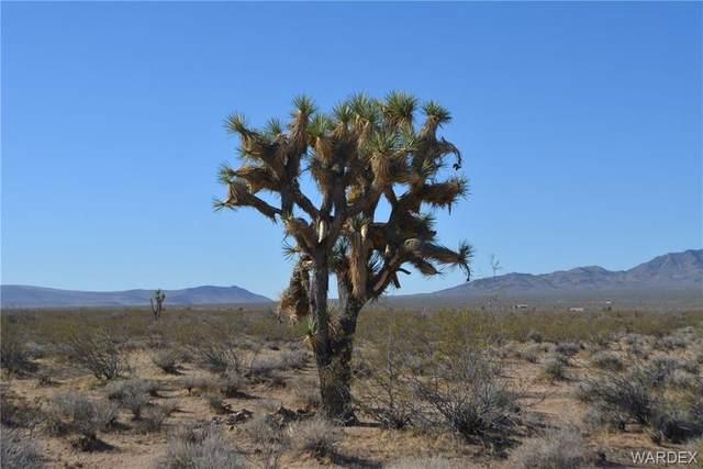 Lot 2034 Butch Cassidy Road, Yucca, AZ 86438 (MLS #978106) :: The Lander Team