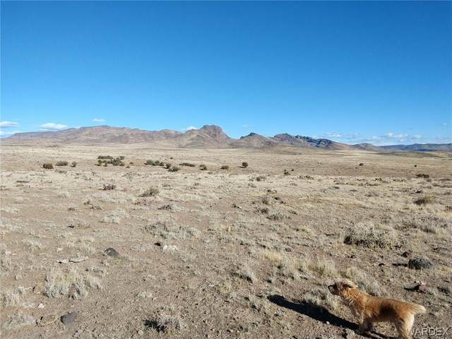 404 ACRES /WELL S Hollyberry Road, Wikieup, AZ 85360 (MLS #979622) :: AZ Properties Team | RE/MAX Preferred Professionals