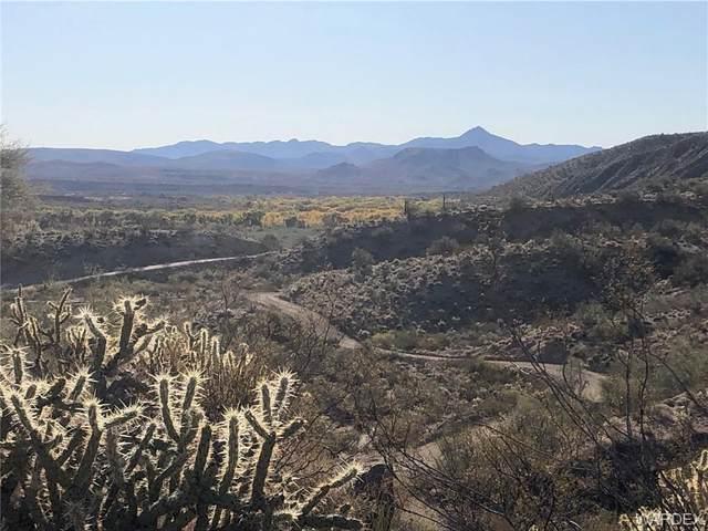 163 acres Banegas Ranch Road, Wikieup, AZ 85360 (MLS #979816) :: The Lander Team