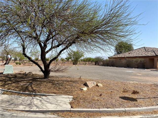9 Torrey Pines Drive, Mohave Valley, AZ 86440 (MLS #979933) :: The Lander Team