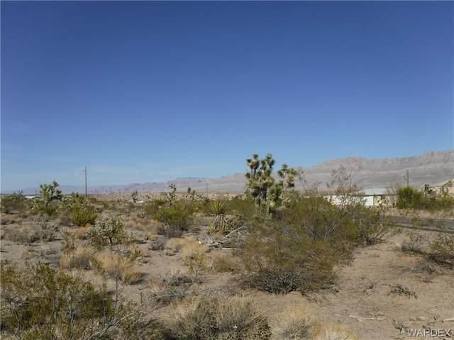 585 E Galloway Drive, Meadview, AZ 86444 (MLS #979974) :: The Lander Team