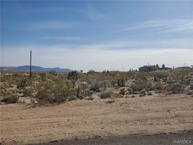 160 E Bradley Bay Drive, Meadview, AZ 86444 (MLS #980066) :: AZ Properties Team   RE/MAX Preferred Professionals