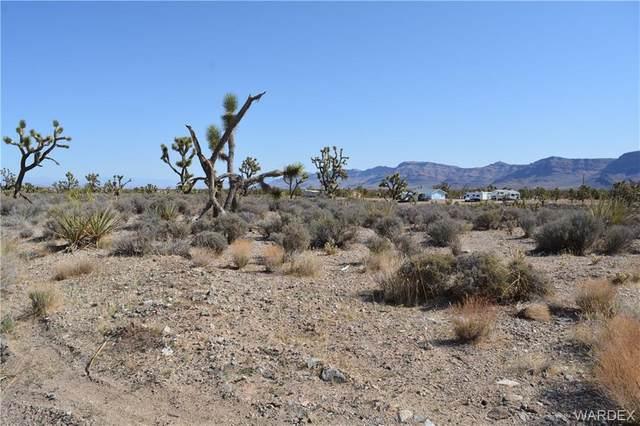 26136 N Rainbow Road, Meadview, AZ 86444 (MLS #980221) :: AZ Properties Team | RE/MAX Preferred Professionals