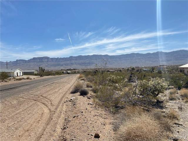 110 E Spencer Drive, Meadview, AZ 86444 (MLS #980243) :: The Lander Team
