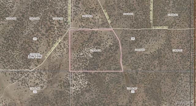 Lot 97 N Munds Road, Peach Springs, AZ 86434 (MLS #980365) :: The Lander Team