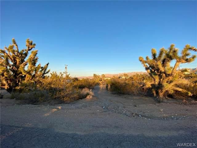 30106 N Catalina Drive, Meadview, AZ 86444 (MLS #980402) :: The Lander Team