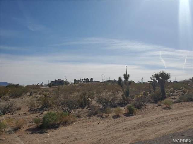 1005 Hance Drive, Meadview, AZ 86444 (MLS #980423) :: AZ Properties Team | RE/MAX Preferred Professionals
