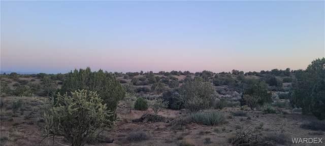 10.52 acres E Lan Drive, Kingman, AZ 86401 (MLS #980623) :: The Lander Team