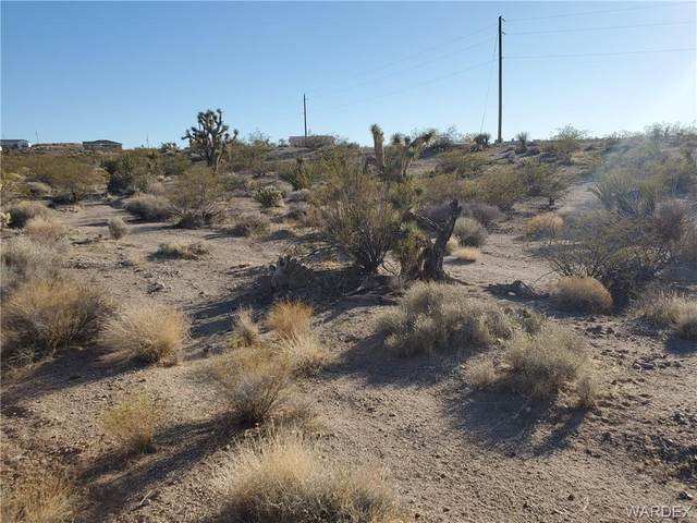 30215 N Separation Drive, Meadview, AZ 86444 (MLS #980825) :: AZ Properties Team | RE/MAX Preferred Professionals