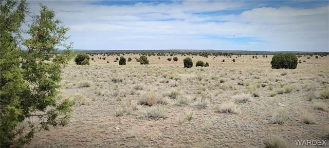 TBD Pumphouse Road, Seligman, AZ 86337 (MLS #980857) :: AZ Properties Team   RE/MAX Preferred Professionals