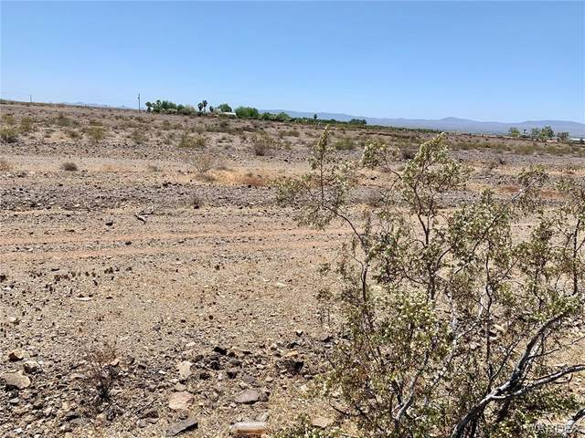 3210 E Boundary Cone Road, Mohave Valley, AZ 86440 (MLS #980981) :: AZ Properties Team   RE/MAX Preferred Professionals