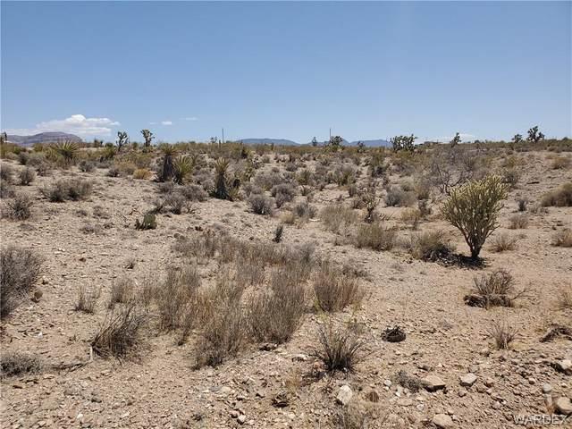 1046 W Middle Point Drive, Meadview, AZ 86444 (MLS #980991) :: AZ Properties Team | RE/MAX Preferred Professionals