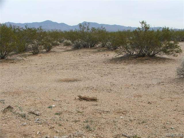 Parcel 660 Doc Holliday, Yucca, AZ 86438 (MLS #981011) :: AZ Properties Team | RE/MAX Preferred Professionals
