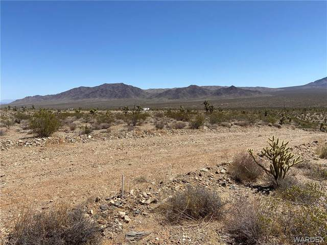 0 W Commadore Drive, Meadview, AZ 86444 (MLS #981076) :: The Lander Team