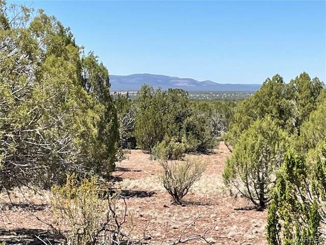 Lots 1351 & 1356 Antelope Trail, Seligman, AZ 86337 (MLS #981614) :: AZ Properties Team | RE/MAX Preferred Professionals