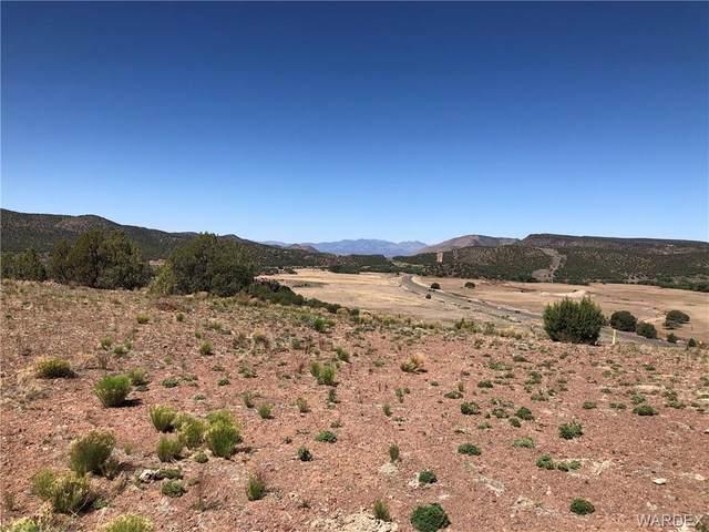 58 N Willows Ranch Road, Kingman, AZ 86401 (MLS #981626) :: AZ Properties Team | RE/MAX Preferred Professionals