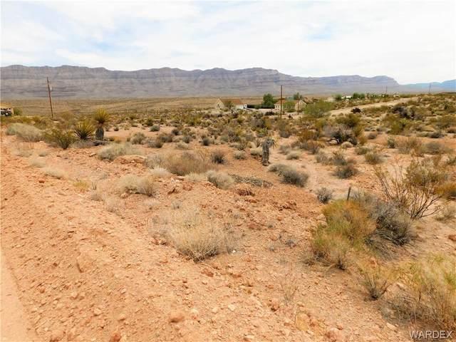 1360 E Dellenbaugh Drive, Meadview, AZ 86444 (MLS #981650) :: The Lander Team