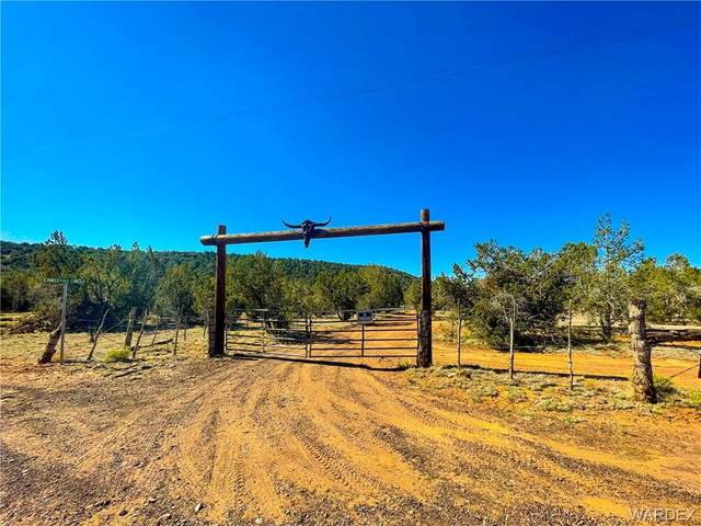 43275 N Anvil Rock Road, Seligman, AZ 86337 (MLS #981656) :: AZ Properties Team   RE/MAX Preferred Professionals