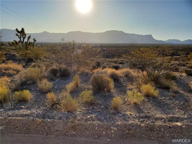 27242 N Tamarisk Street, Meadview, AZ 86444 (MLS #981802) :: The Lander Team
