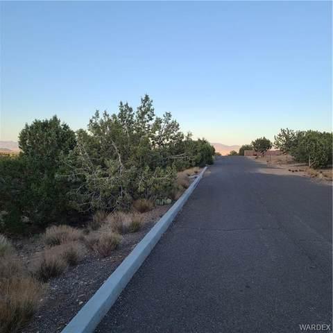 915 W South Shore Drive, Kingman, AZ 86409 (MLS #981817) :: AZ Properties Team | RE/MAX Preferred Professionals
