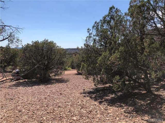 32 Mapuana Trail, Kingman, AZ 86401 (MLS #981828) :: The Lander Team