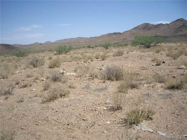 7729 W Sanctuary Road, Chloride, AZ 86431 (MLS #981869) :: AZ Properties Team | RE/MAX Preferred Professionals